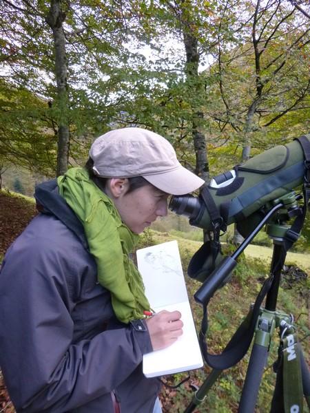 aurélie calmet terrain2 (Copier)