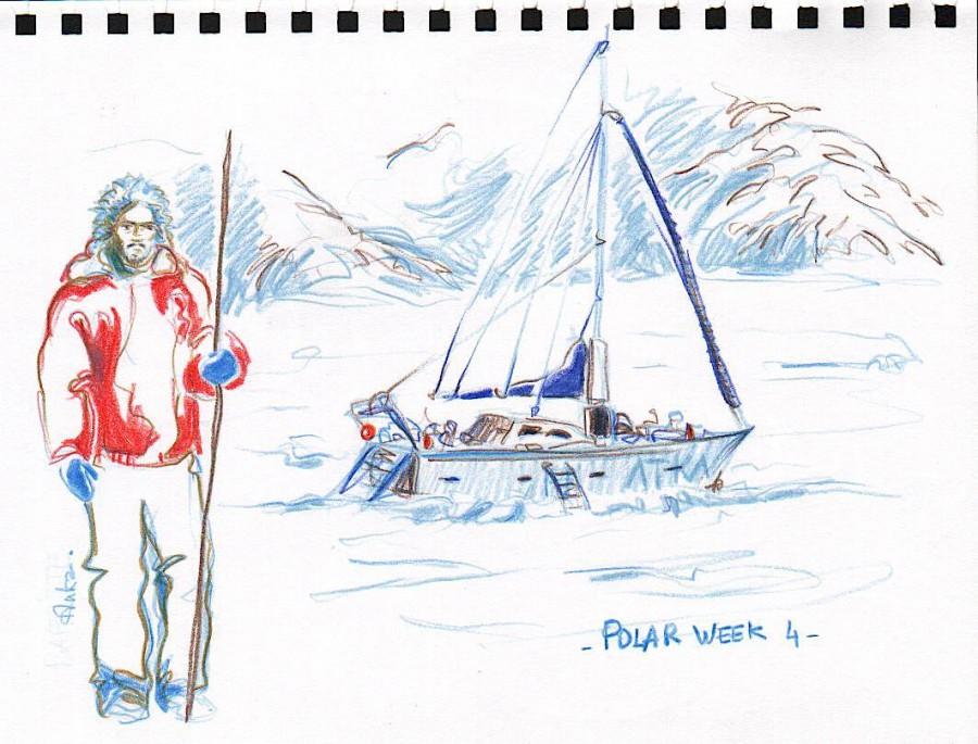 auka polar week 4