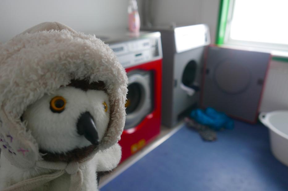 Babette m'accompagne pour laver les vêtements de tout l'équipage. Ça va sentir bon, génial !